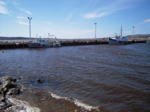 05_bay_of_fundy_high_tide